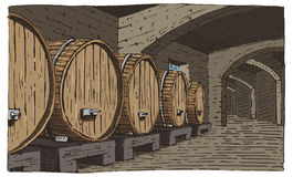 Wine barrels in cellar vintage old looking vector illustration engraved, hand drawn scratchboard style Stock Images