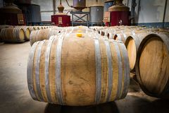 Wine barrels in the cellar of the winery. Wine barrels in wine vaults Royalty Free Stock Photos