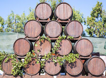 Wine barrels decoration in Santorini Royalty Free Stock Photography
