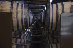 Wine barrels in the foreground Royalty Free Stock Photo