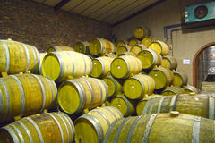 Wine barrels. At a French vineyard Royalty Free Stock Photos