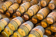 Wine barrels full of wine in storage on a wine farm. Royalty Free Stock Images