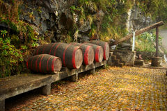 Wine barrels. Madeira. Wine barrels on Madeira island Stock Photography