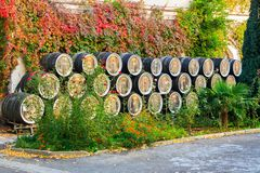 Wine barrels in open air Stock Images