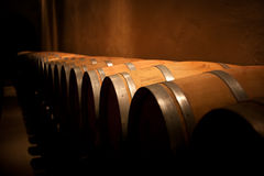 Wine barrels row in an aging cellar. In Ribera del Duero area, Spain Royalty Free Stock Photos
