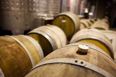 Wine barrels in rows Stock Photo