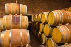 Wine barrels in rows Stock Photography