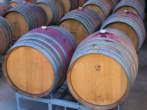 Wine barrels in rows Stock Images