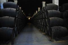 Wine barrels Stock Photography