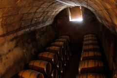 Wine barrels on a dry and cold antique room in a cellar in mallorca Stock Photography