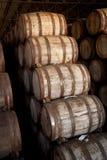 Wine barrels Stock Photo
