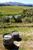 Wine barrels on a stunning Nelson vinyard
