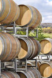 Wine barrels at vineyard Royalty Free Stock Image