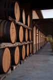 Wine barrels in winery. Scenic view of stacked wine barrels in winery building royalty free stock image