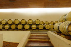 Wine barrels at the winery `Concho y Tora`. Stock Images