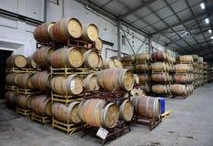 Wine barrels at the winery Santa Rita. Royalty Free Stock Images