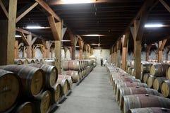 Wine barrels at the winery Santa Rita. Royalty Free Stock Photo