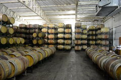 Wine barrels at the winery Viu Manent. Stock Photography