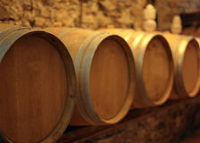 Wine barrels in wood Stock Images