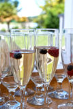 Wine and berries in glasses Stock Photography