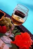 Wine and berry Stock Images