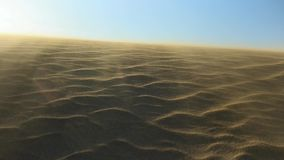 Wine blowing on a sand dune. Wind blowing on a desert sandy dune stock video footage