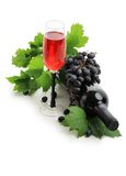 Wine botlle Stock Photo