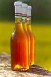 Wine bottle. In sunshine on the table Royalty Free Stock Images