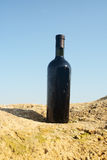 Wine in the bottle. Royalty Free Stock Photos