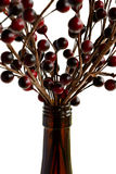 Wine Bottle and Berries. Close view of a wine bottle holding sticks with berries royalty free stock photos