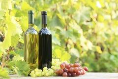 Wine in bottle Royalty Free Stock Photo