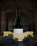 Wine bottle in cellar Stock Photography