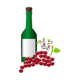 Wine bottle with cork and bunch of grapes Royalty Free Stock Photo