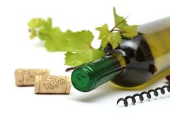 Wine bottle and corks Stock Photos