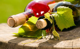Wine bottle with currant leaves around Royalty Free Stock Photography