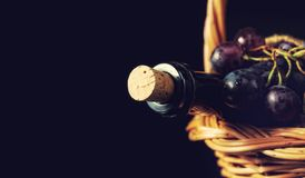 Wine bottle and dark blue grapes Stock Photos