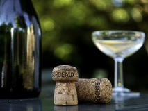 Wine bottle, glass and cork in bordeaux france. Wine bottle, glass and cork on garden table in bordeaux france Royalty Free Stock Photos