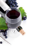 Wine bottle with glass and grapes Royalty Free Stock Photo