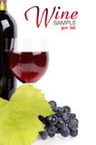 Wine bottle, glass and grapes Royalty Free Stock Photography