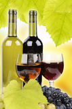 Wine bottle. Glass and grapes on background Stock Image