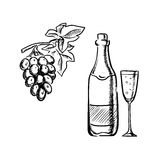 Wine bottle, glass and grapes sketch Royalty Free Stock Photos