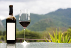 Wine. Bottle and glass in nature background Royalty Free Stock Images