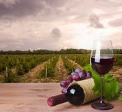 Wine bottle, glass and red grape on wineyard background Stock Photography