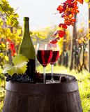 Wine bottle and glasses on wooden table Stock Photos