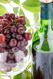Wine bottle and  grape Stock Photo