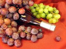 Wine bottle and grape Stock Photography