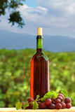 Wine bottle and grape Royalty Free Stock Photos