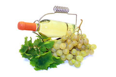 Wine bottle and grape isolated. Wine bottle and grape vine branch isolated on white Stock Photography