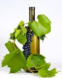 Wine bottle in grape leaves stock photos
