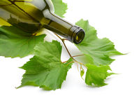Wine bottle and grape vine Royalty Free Stock Photography